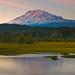 Mount Adams, Trout Lake