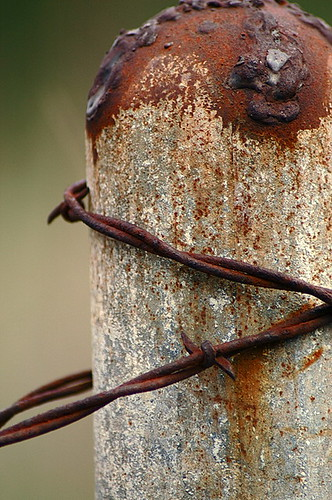 how to get past barbed wire