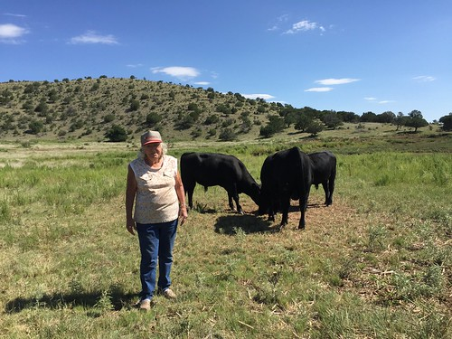 Marjorie Fleming with her bulls behind her