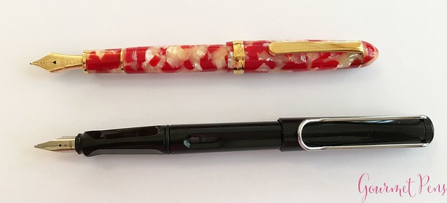 Review Platinum 3776 Celluloid Koi Fountain Pen @AndersonPens @CarolLuxury 6