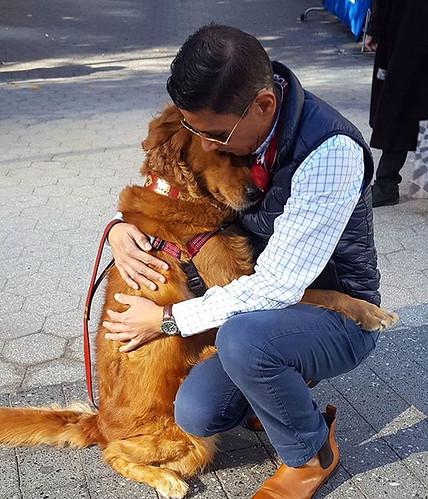 dog-gives-hugs-louboutina-retriever-new-york-12