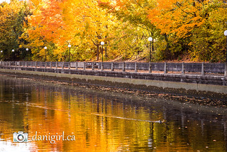 Autumn on the Rideau Canal | by Dani_Girl