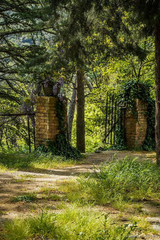 Camino que baja a las pozas del Glorieta en Mas de Forès
