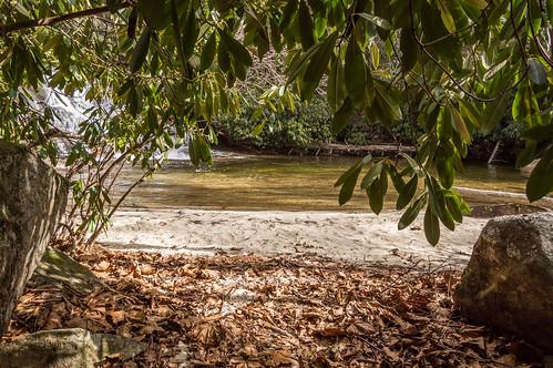 Upper Grassy Falls beach area - 1