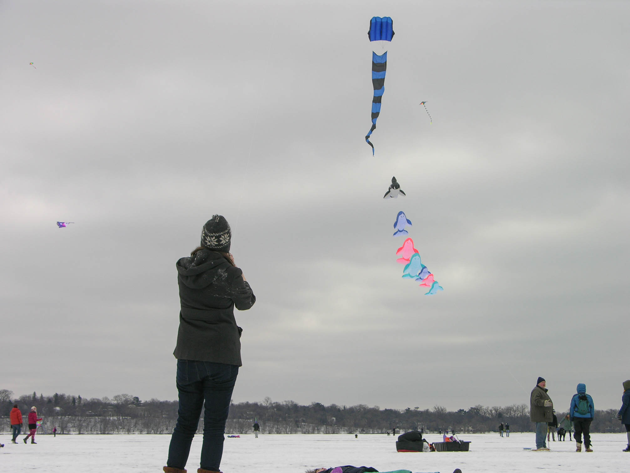 2017 Lake Harriet Winter Kite Festival