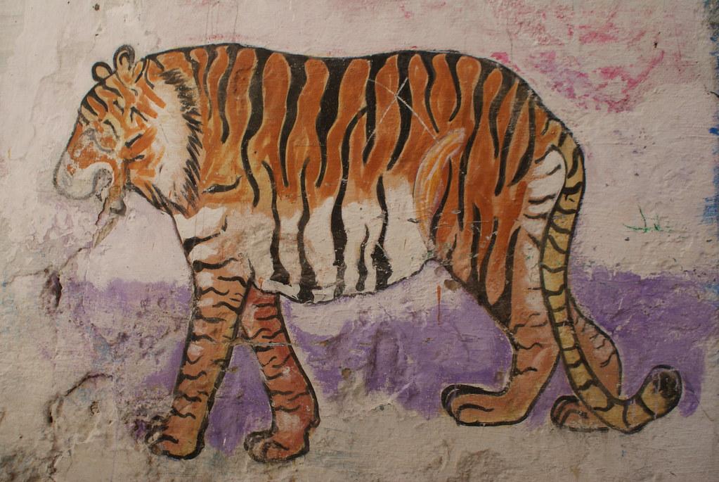 Un tigre devenu grassouillet à force de tajine sur un mur d'Essaouira.