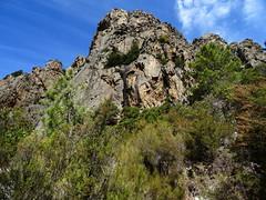 Dans le ravin de remontée depuis le Vaglie : sortie de la forêt sous le Kyrie Eleison