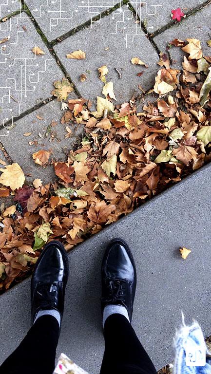 O outono chegou