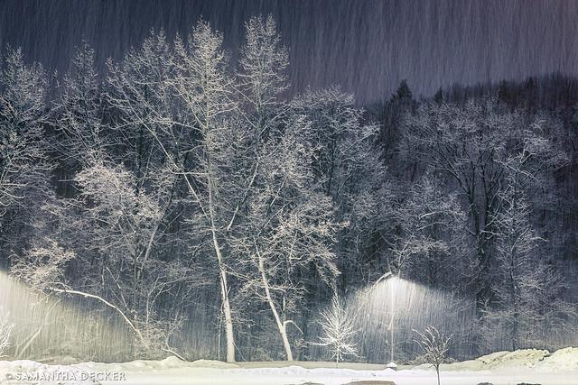 Snow Take 2