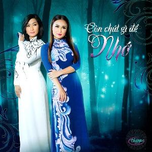 Nhiều Nghệ Sỹ – Còn Chút Gì Để Nhớ – TNCD578 – 2017 – MP3 – Album