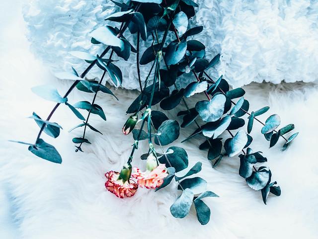 FlowersEukalyptusNeilikka-2042314.jpg,kukkakimppu, bouquet, kukat, flowers, leikkokukat, lehtivihreä, eucalyptus, popular, suosittu, muoti, fashion, oksat, branches, carnations, oranssi neilikka, orange carnations, inspiration, inspiraatio, kukka-asetelma, arrangement,