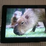 iPad液の9.7インチ液晶パネルを外付けディスプレイ化