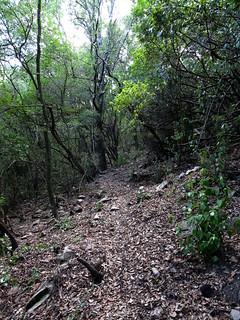 Entre la 1ère et la 2ème carbonara du sentier de Petra Stretta