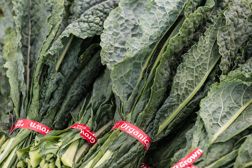 "Organic ""dinosaur"" kale grown at Ground Stew Farms in San Martin, Monterey County, CA"