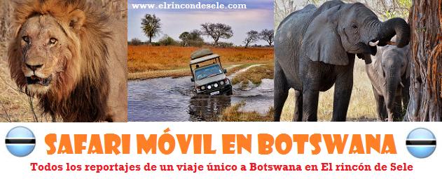 Todos los artículos del último viaje a Botswana en safari móvil