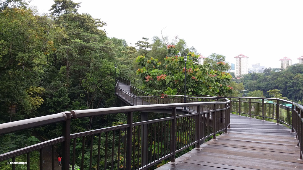 Southern Ridges -kävelyreitillä, Singapore