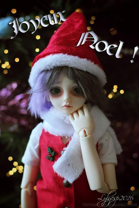 [ Shin - KDF Bory ] Cheshire chaton ? (23/12/2018) - Page 4 31700042432_168066f590_b