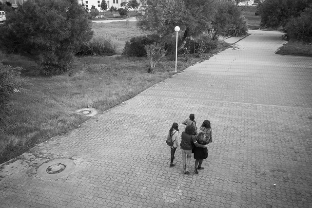 Walking friends in the university's campus