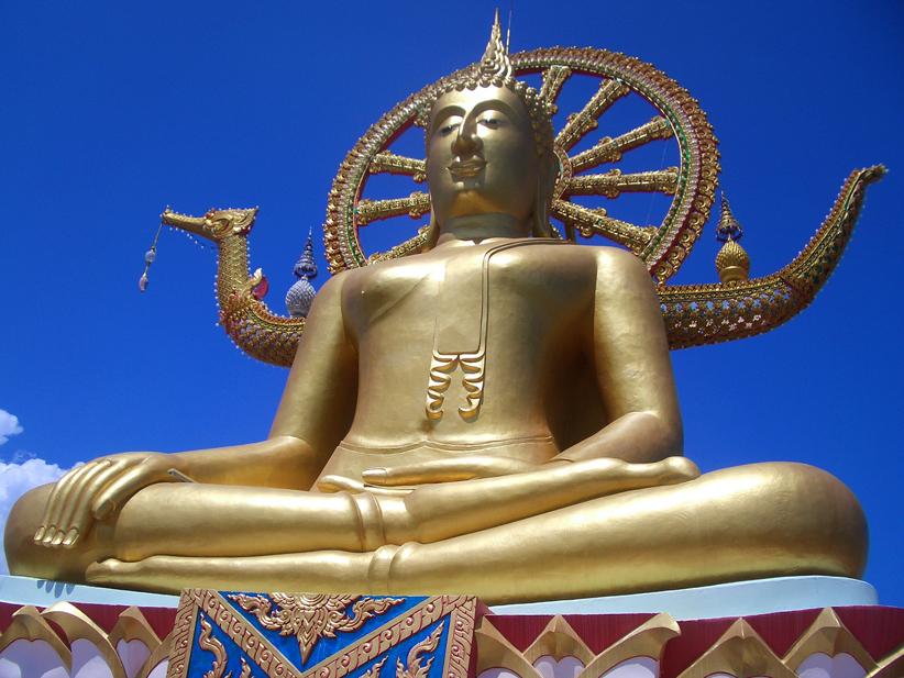 thaikku8