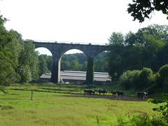 Viadukt am Anfang des Eifelsteigs