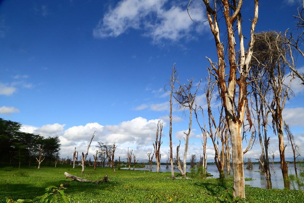奈瓦夏湖畔。攝影:鍾坤典。