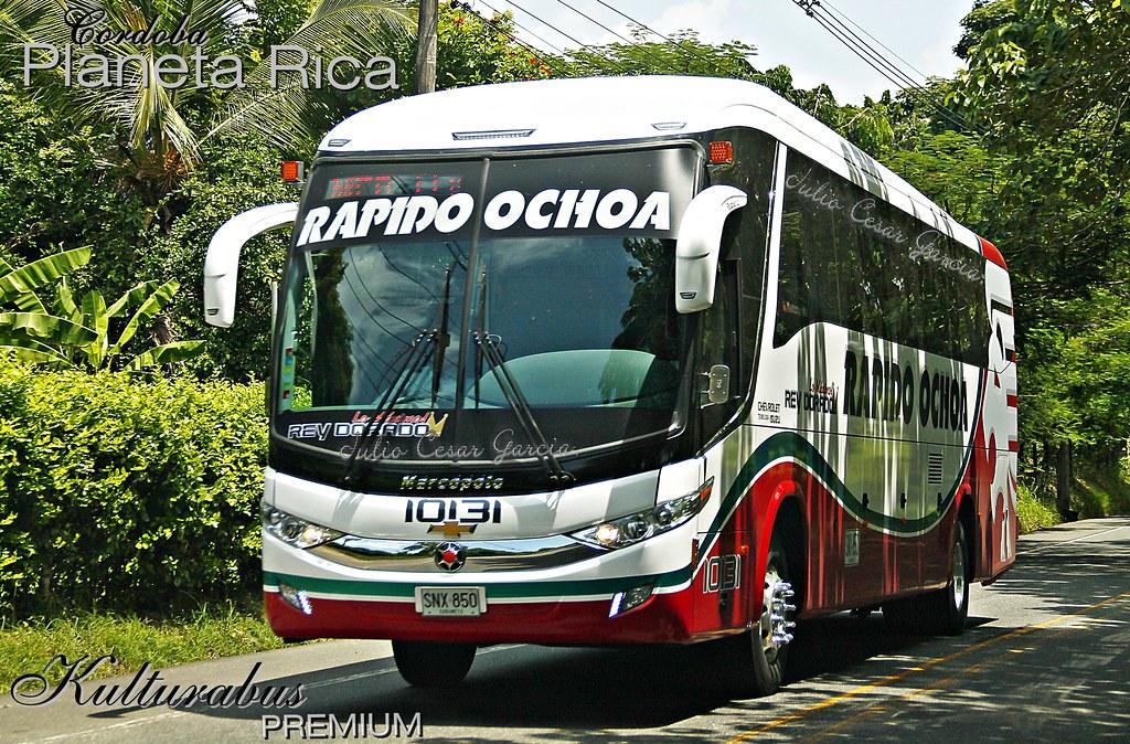 ... Rapido Ochoa 10131   by Galería de Julio Cesar García