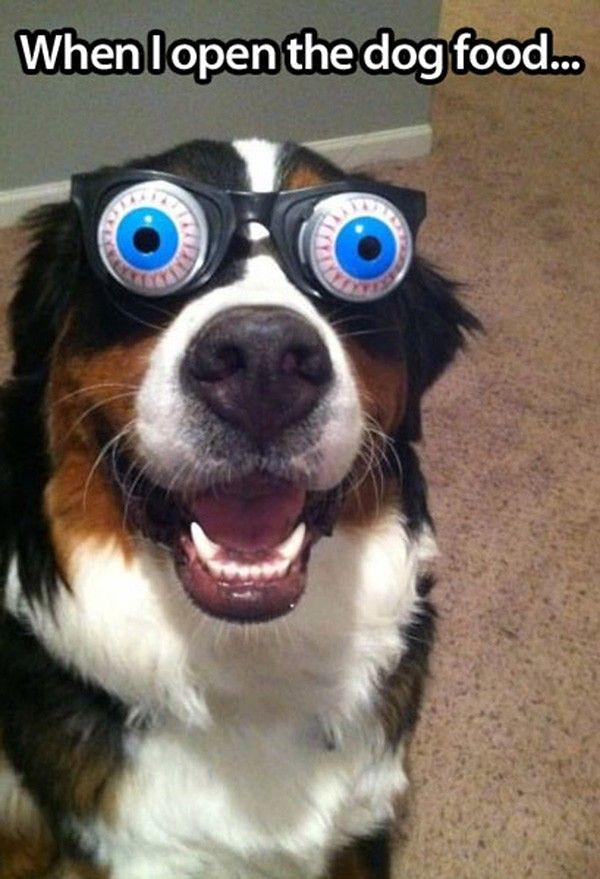 Crazy Eye Glasses