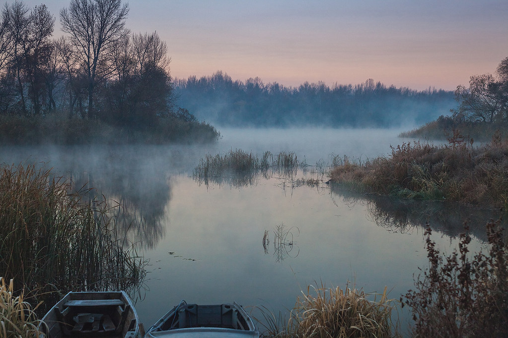 Lake morning in autumn essays