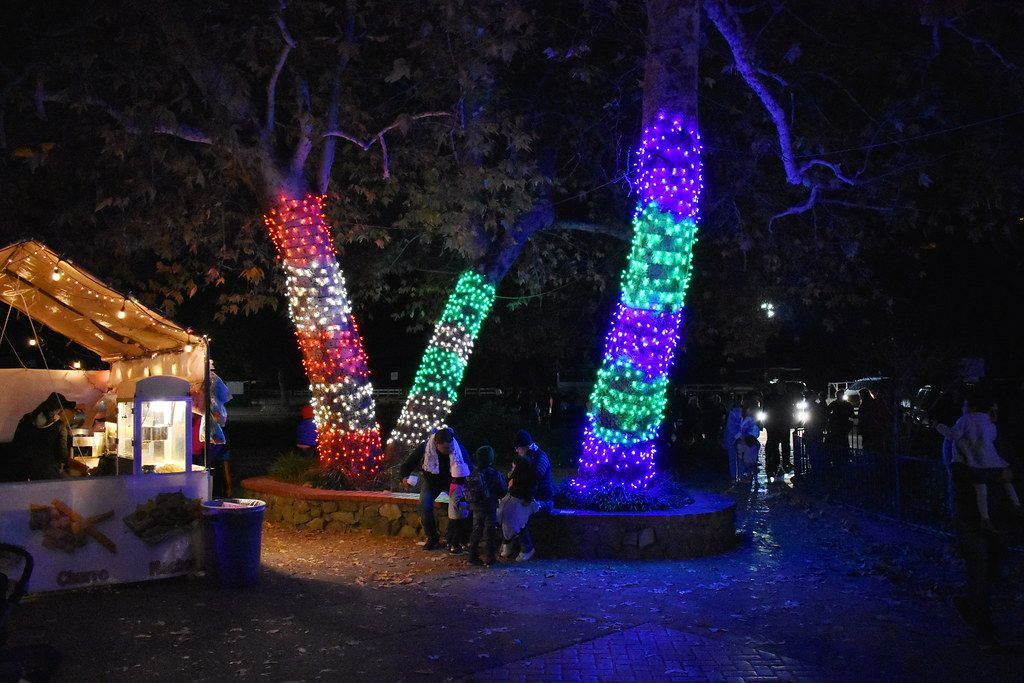 High Quality ... The Griffith Park U0026 Southern Railroad Holiday Light Festival Train Ride  | By Michael Locke