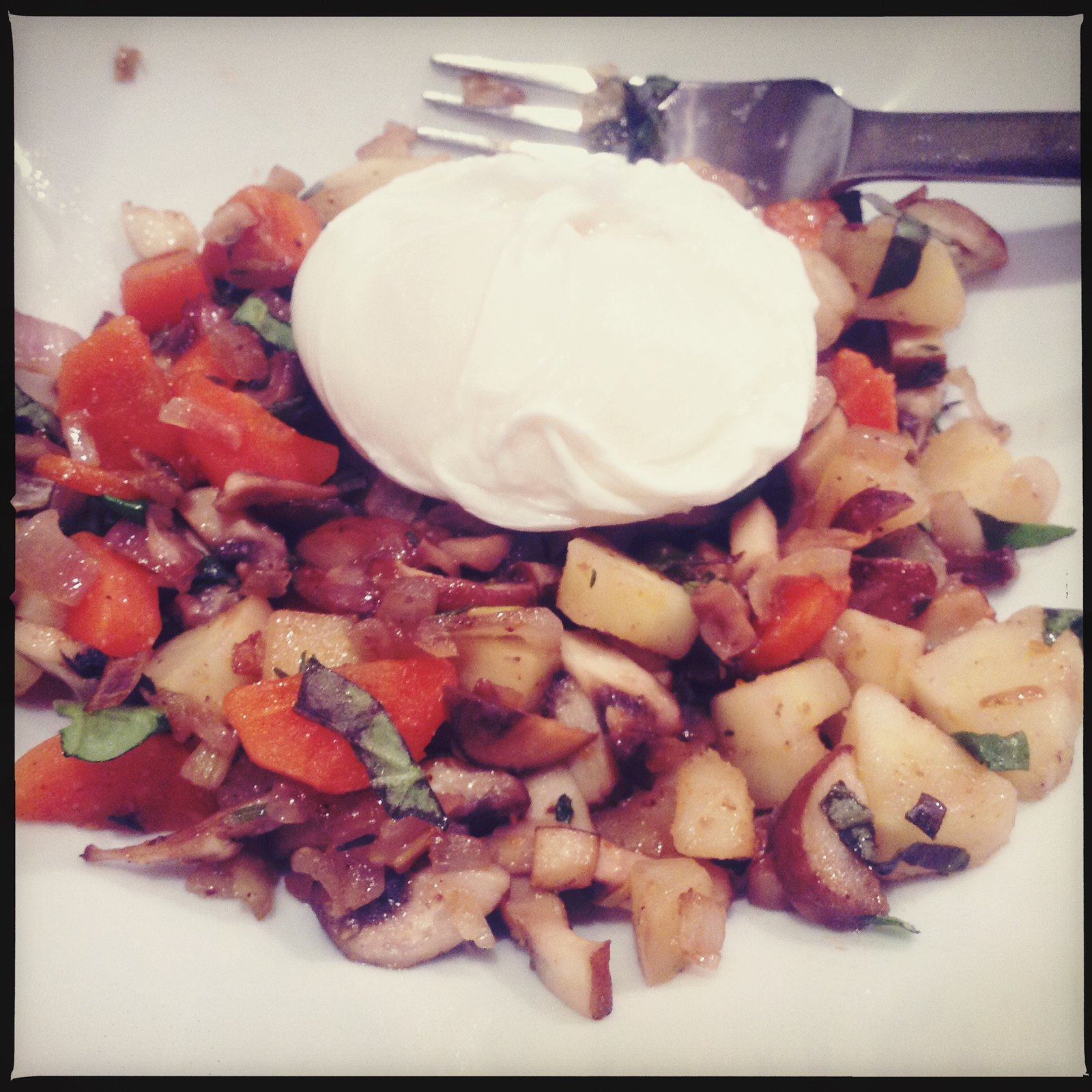 Mushroom ragout with poached egg