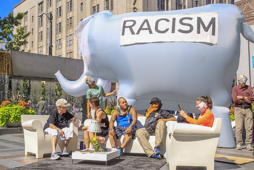 racism  the elephant in the room