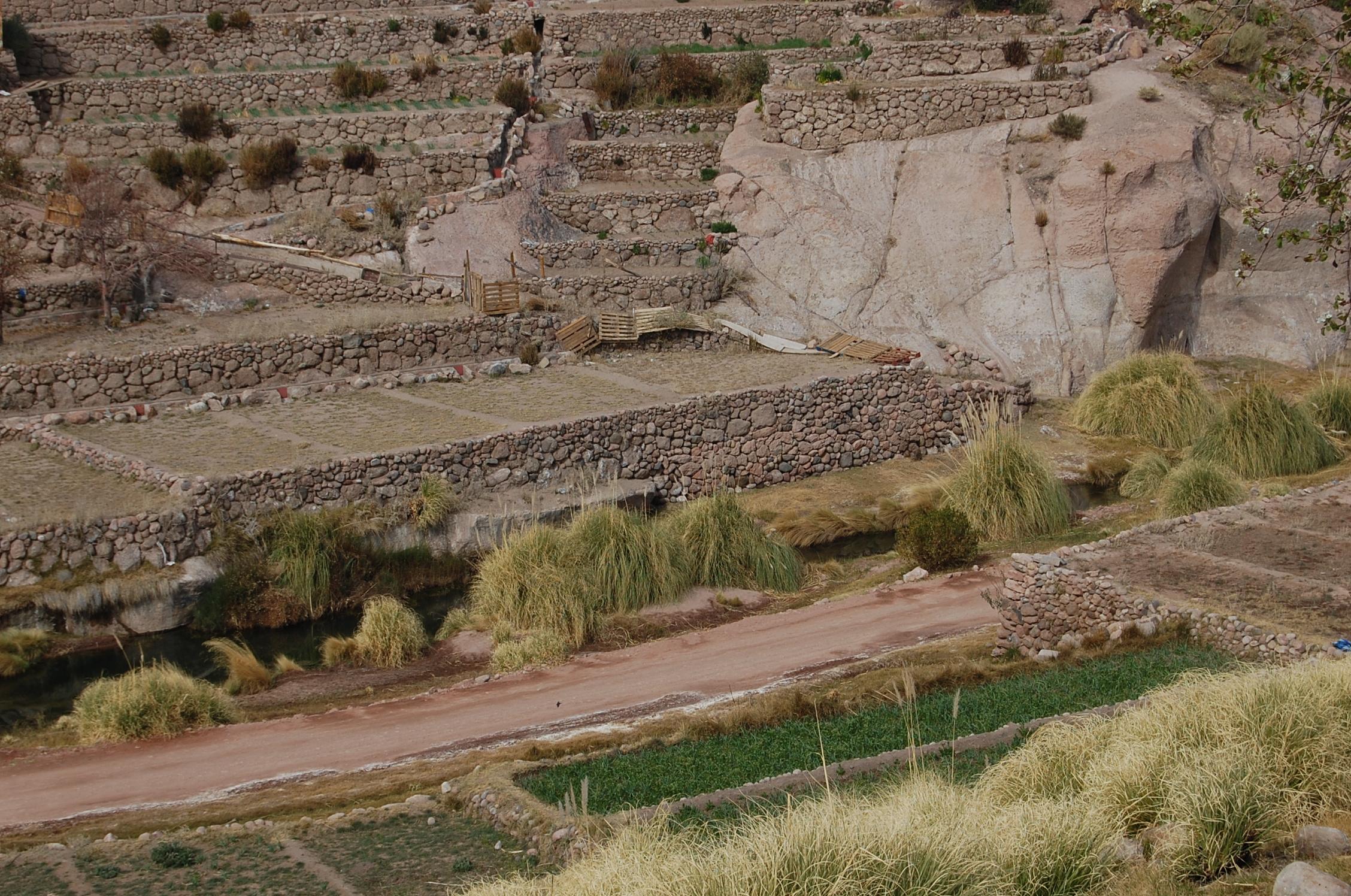 Cultivo En Terrazas Un Modelo Indígena De Seguridad Alimentaria