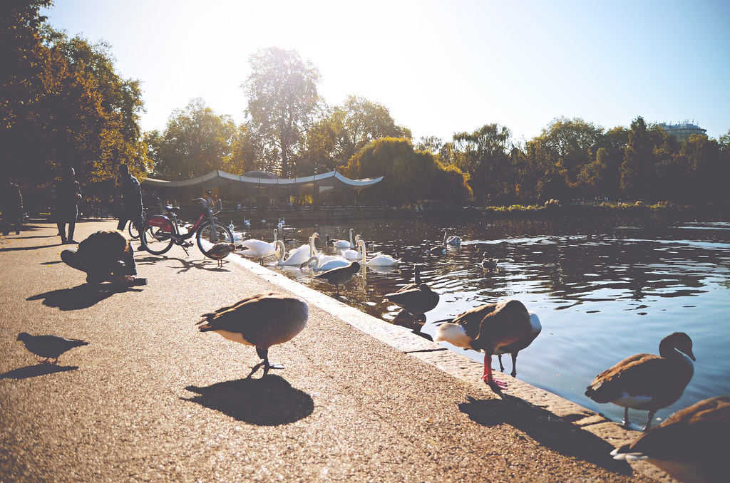 Hyde Park, London | via It's Travel O'Clock