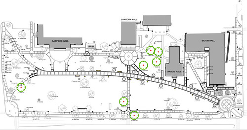 A rendering shows where the new trees will be planted.