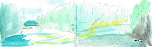 10.8.16 - River Study