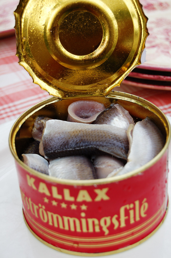surstr246mming surstr246mming fermented baltic herring in