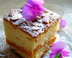 Apricot-Almond Coffee Cake | by creampuffsinvenice