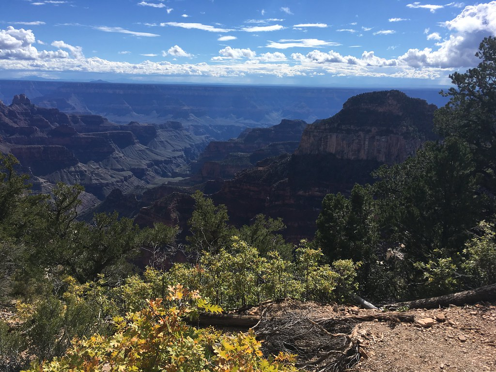 National Parks Trip 2016