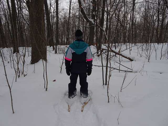 Back to Snowshoeing