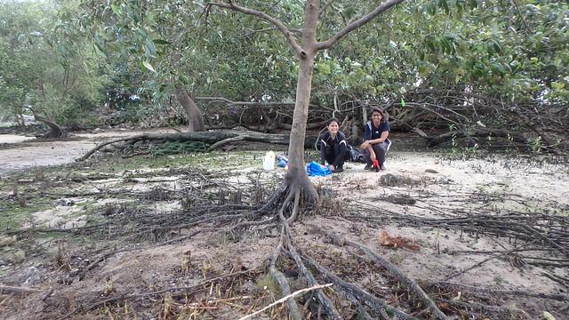 Removing an abandoned fish net at Kranji