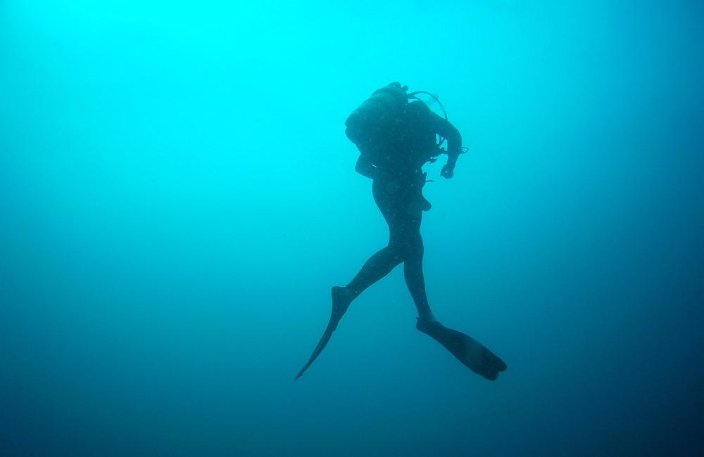 Mosambik sukellus | Sukeltaja syvällä vedessä