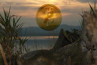 Best Bitcoin Exchange Usd