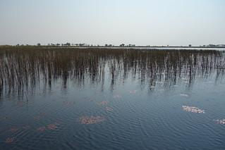 Delta do Okavango, Botswana
