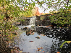The Hyde Pond Dam removal project in Mystic, Conn., will remove the dam on Whitford Brook, a tributary of the Mystic River.