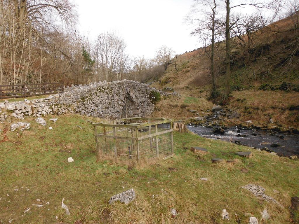 Clapham Nature Trail 20