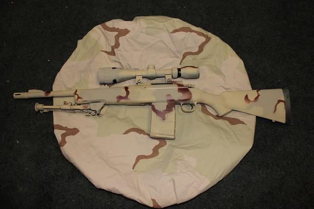 Thirteenth Rifle pic 1