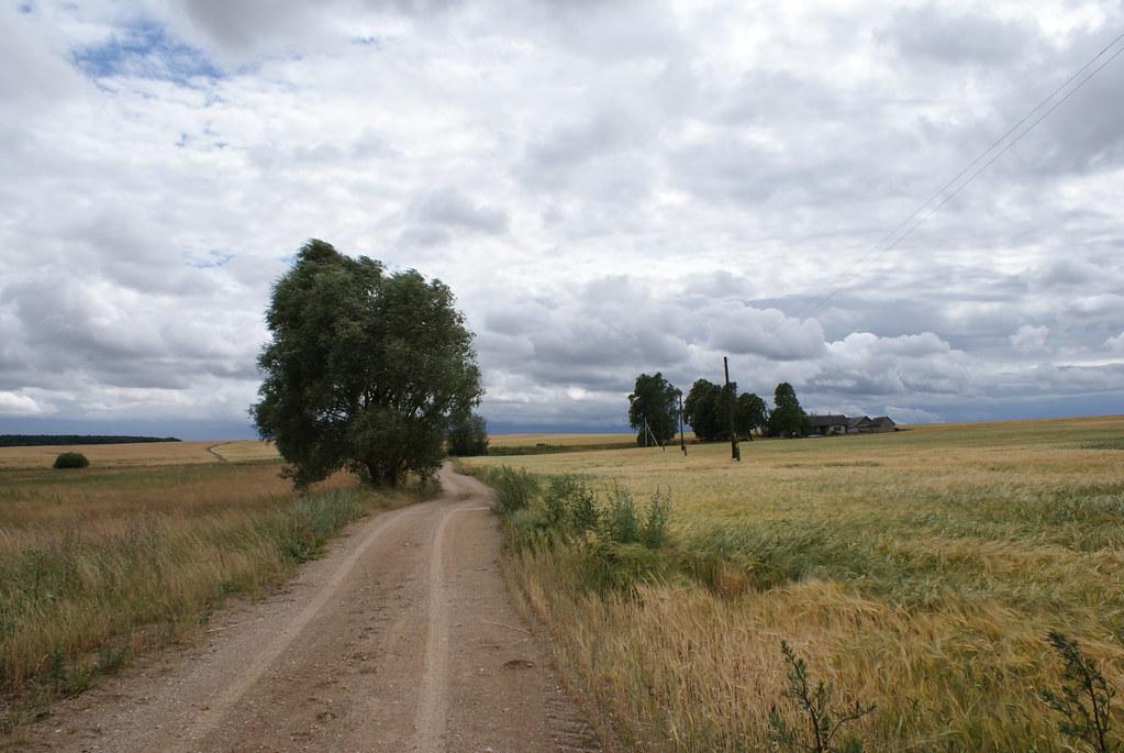 La Biélorussie est une immense plaine recouverte de forêts, de champs et de marécages.