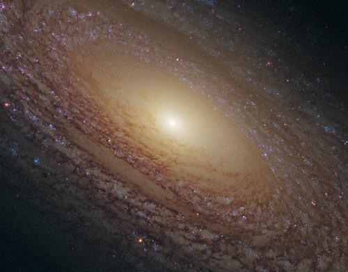 VCSE - Mai kép - NGC 2841-es spirálgalaxis közelről