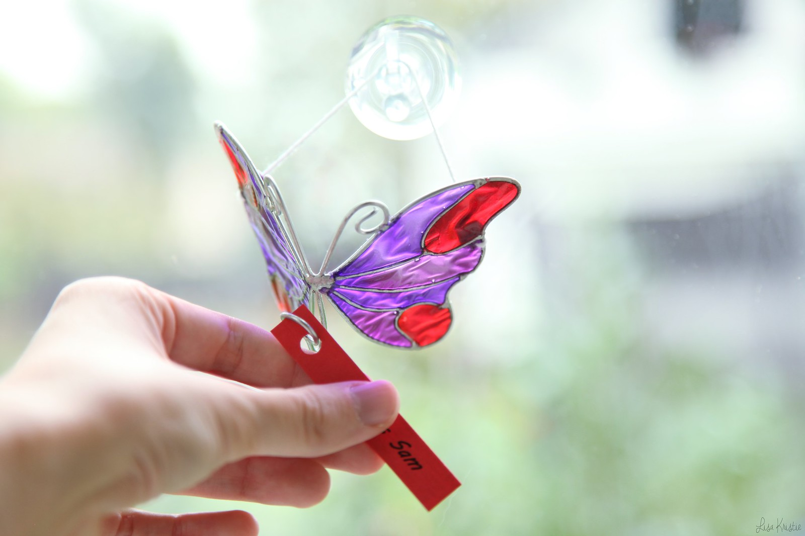 glass butterfly colorful red purple memorial baby stillbirth stillborn in memory of Sam
