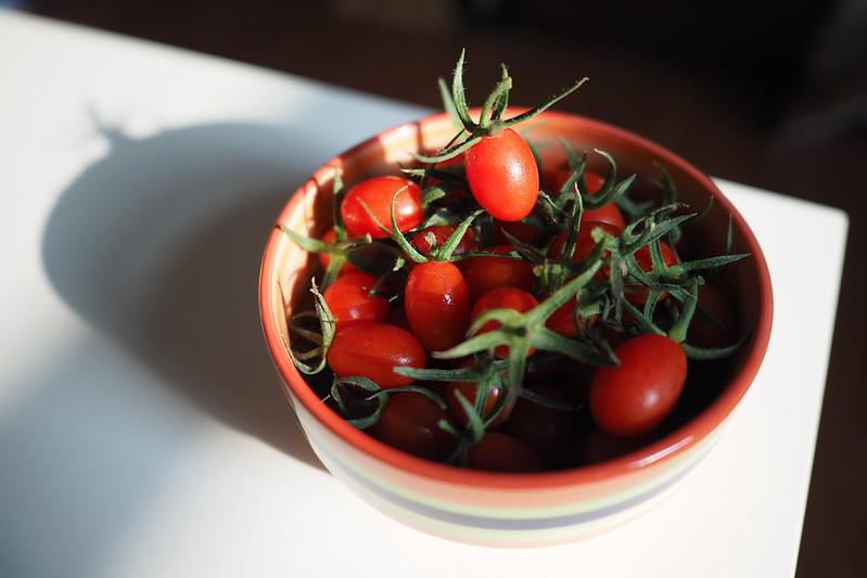 小番茄|My room.